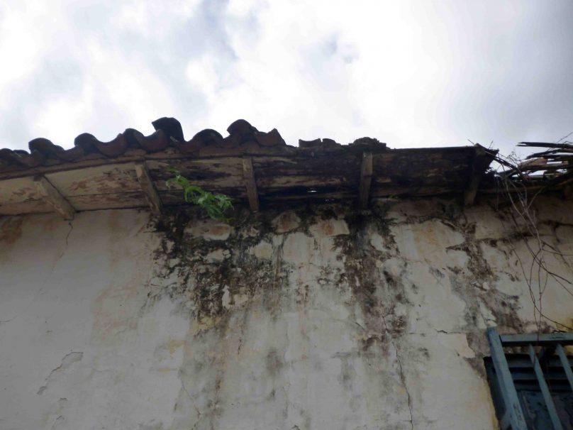 Humedad en las paredes marinela a a o 2017 iam venezuela - Humedad en la pared ...